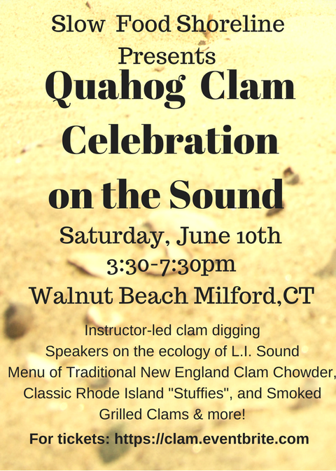 Quahog-Clam-Celebration