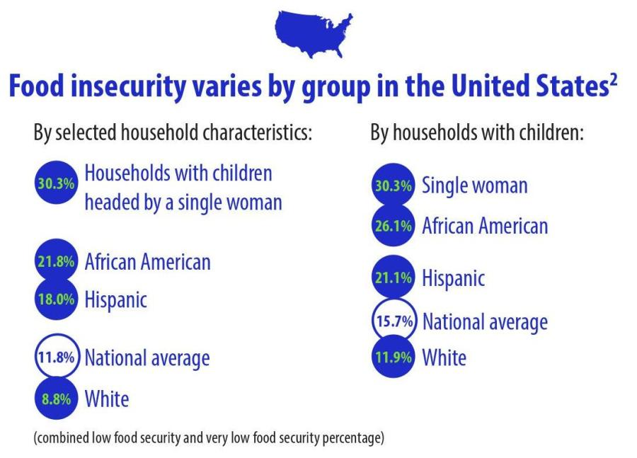 food security by race